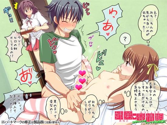 姉弟発情期 -お姉ちゃんのセックス強化訓練!-